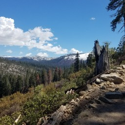 Yosemite in Pictures: Day 1
