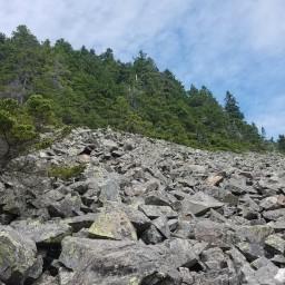 New England Hundred Highest: Vose Spur & Mt. Nancy