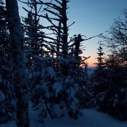 Winter 48: Waumbek
