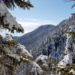 Winter 48: Passaconaway, Whiteface