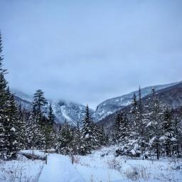 Winter 67: Mansfield