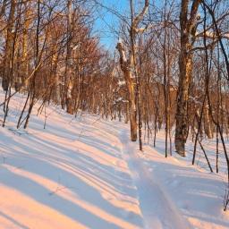 Winter 67: North & South Crocker