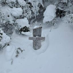 Winter 67: Redington