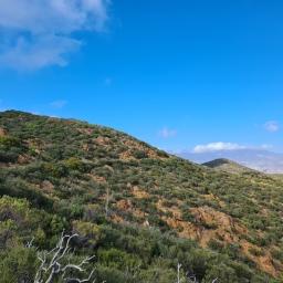PCT: Campo to Cajon Pass, Day 5
