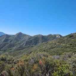 PCT: Campo to Cajon Pass, Day 7
